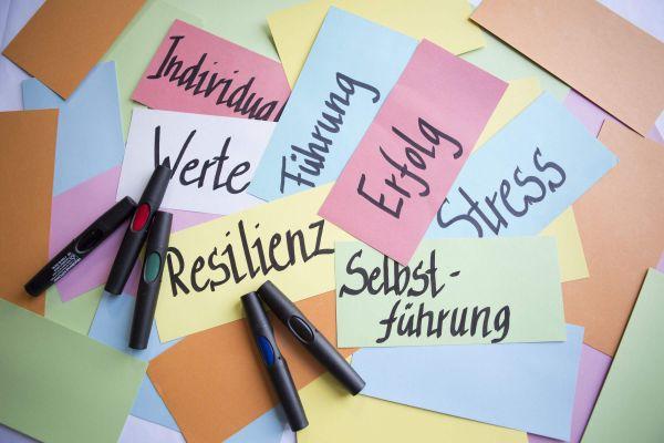 Verbindung der Methode der begleitenden Kinesiologie mit dem systemischen Coaching